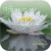 Affirmations - Universal Connection